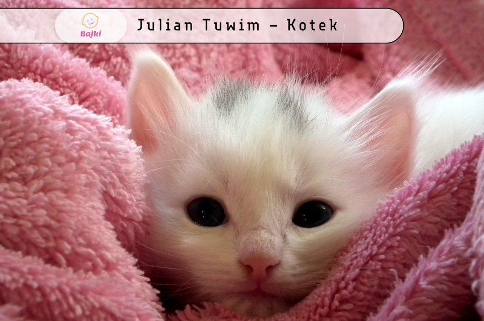Julian Tuwim Archives Strona 4 Z 4 Bajki